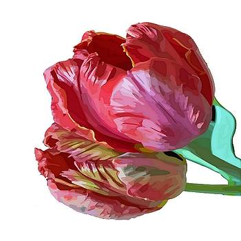 Tracey Harrington-Simpson - Two Red Tulips Vector Isolated