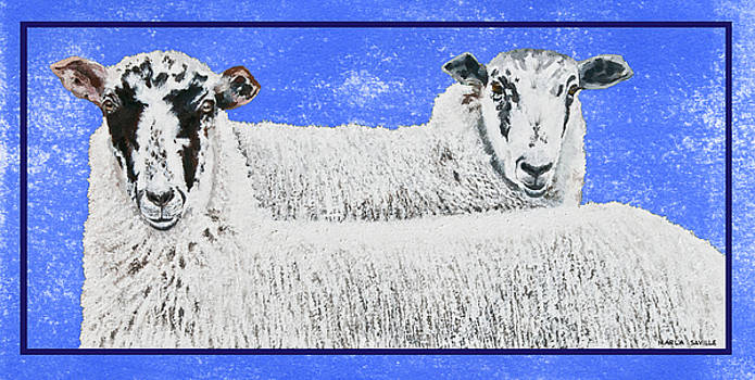 Two Scottish Sheep by Marla Saville