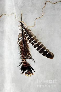 Two Tattered Turkey Feathers by Stephanie Frey