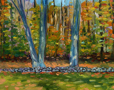 Two Trees Stone Wall by Jane  Simonson