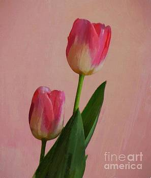 Two Tulips For You by John Kolenberg