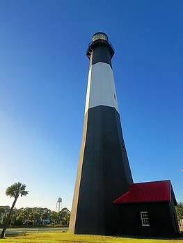 Tybee Lighthouse by Sandra McClure