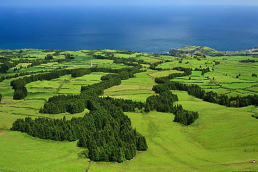 Gaspar Avila - Typical Azores islands landscape