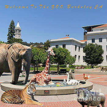 Wingsdomain Art and Photography - UC Berkeley Welcomes You To THE ZOO Please Do Not Feed The Animals square and text