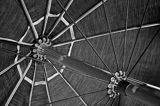 Umbrella by Brady Lane