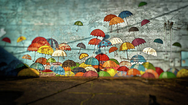 Umbrellas  by Matthew Ahola