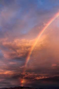 Under the rainbow by Tammy Espino