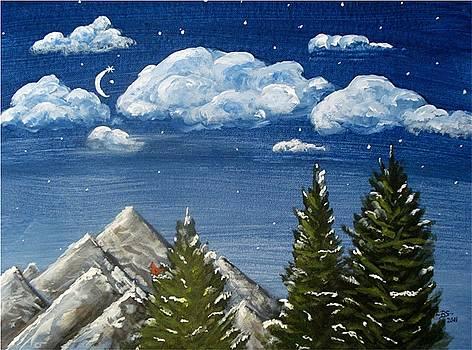 Under the Stars by Bonnie Schallermeir