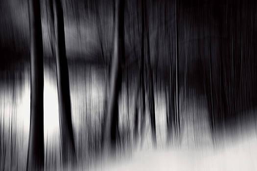 Undertones by Dorit Fuhg