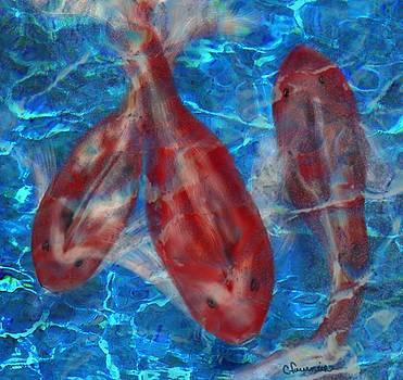 Underwater koi by Christine Fournier