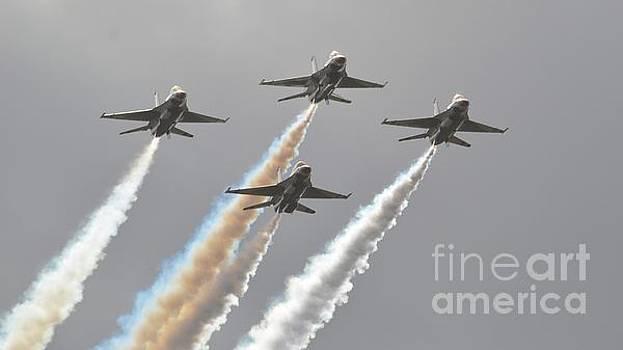 United States Air Force Thunderbirds by Carol McGunagle