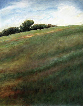 Up Country, Chester County by Janeice Silberman