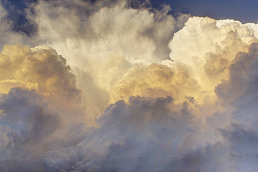 Updraft of Cotton by Zach  Roberts