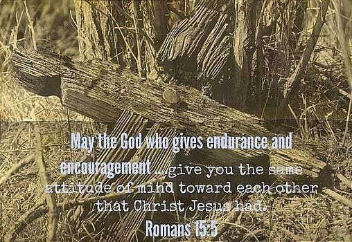 gratitiude