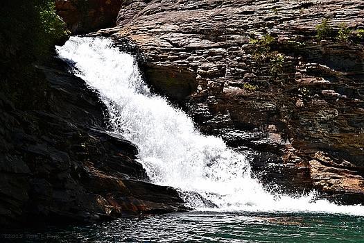 Upper Falls at Lula Lake by Tara Potts