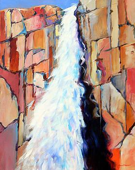 Upper Falls by David  Maynard