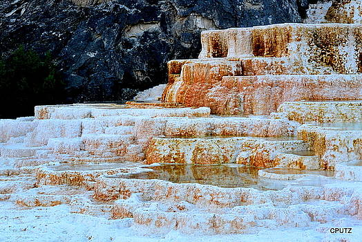 Upper Terraces by Carrie Putz