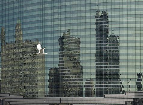Urban reflection by Jim Wright