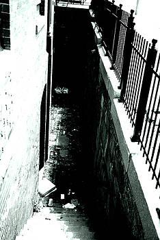 Karol Livote - Urban Shadows