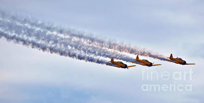 USA Air Show Planes by Elaine Manley