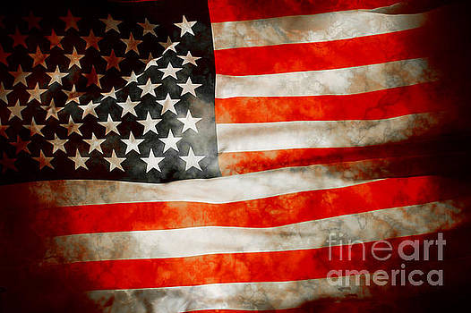 USA Old Glory Patriot Flag by Phill Petrovic