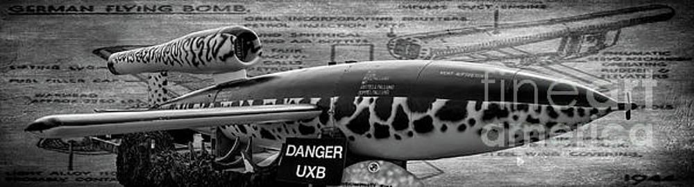 Adrian Evans - V-1 Flying Bomb