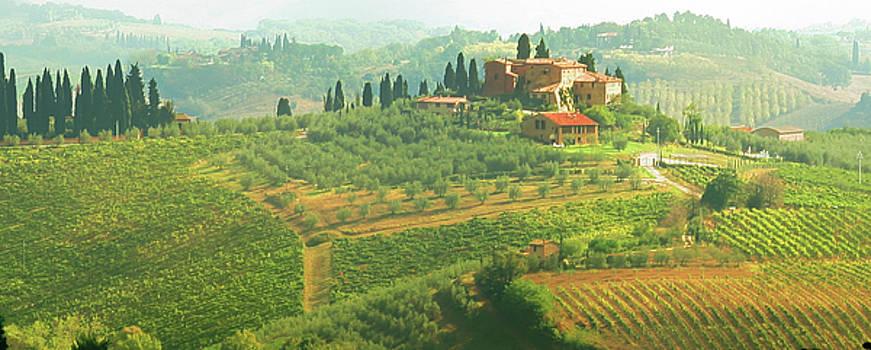 Val d'Orcia Jewel of Tuscany by Vicki Hone Smith
