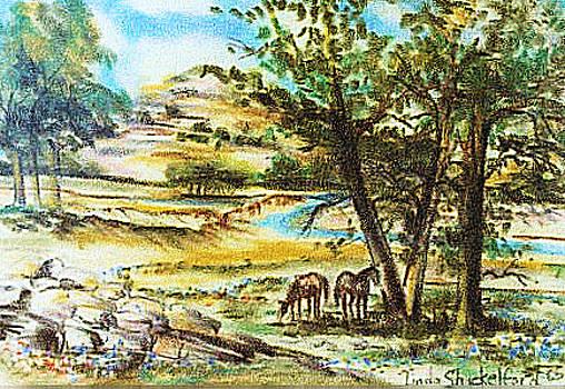 Valley of Horses by Linda Shackelford