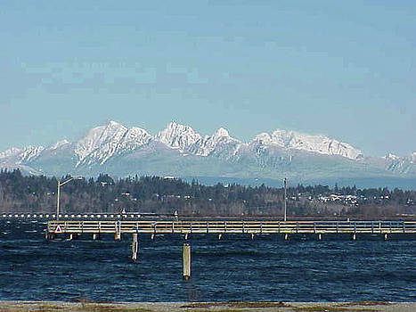 Vancouver, Canada And Snowy North Shore Mts. by Jay Milo