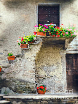 Vases with flowers on stairs by Silvia Ganora
