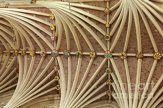 Patricia Hofmeester - Vaulted ceiling in Exeter cathedral