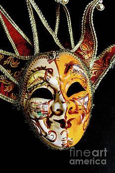 Venetian Mask 2 by Steve Purnell