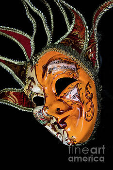 Venetian Mask 5 by Steve Purnell