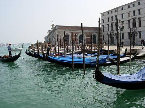 Leslie Rhoades - Venice