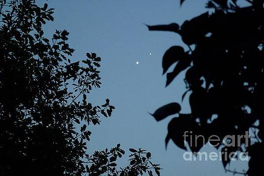 Venus And Jupiter Conjunction 2015 by Jean Bernard Roussilhe