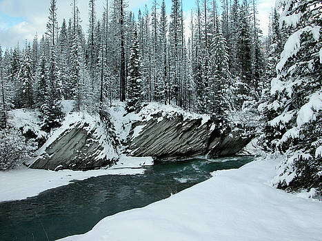 Verdant creek - Winter 5 by Stuart Turnbull
