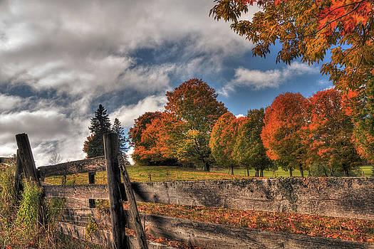 Vermont Autumn Scene by Joann Vitali