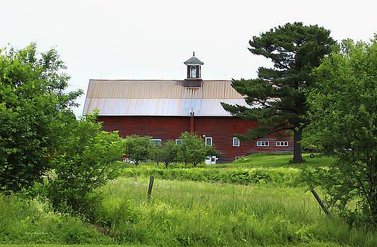 Deborah Benoit - Vermont Barn With Tire Swing