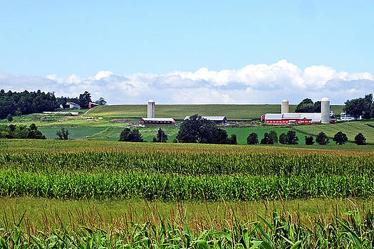 Vermont Farm Country View by Bill Morgenstern