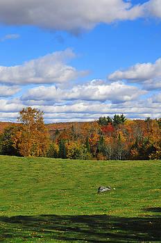 Vermont field by Mandy Wiltse