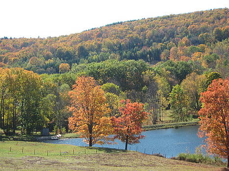 Vermont Pond by Lyn Vic
