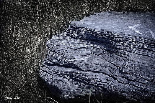 Vermont Stone #1 by Yuri Lev