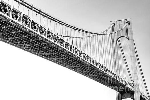 Verrazano Narrows Bridge by David Rucker