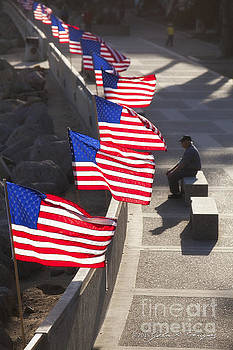 Veteran With United States Flags by John A Rodriguez