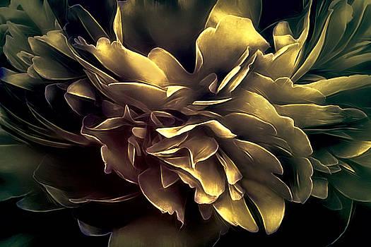 Vibrations - Fall by Darlene Kwiatkowski