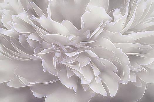 Vibrations - Spring by Darlene Kwiatkowski