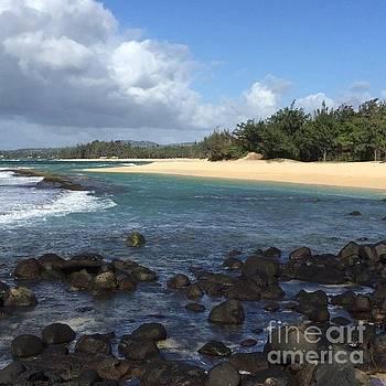 #video #aloha #makemoments by Sharon Mau