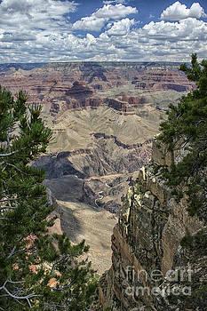 Patricia Hofmeester - View at Grand Canyon