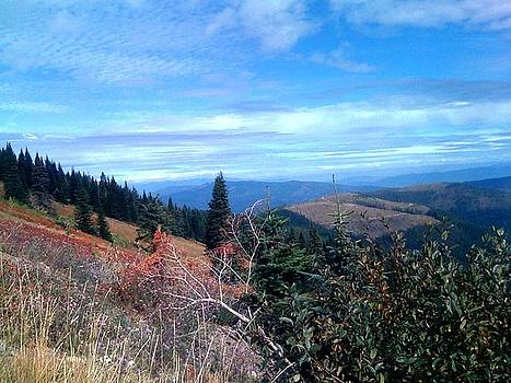 View from Mt.Spokane by Jerry Browning