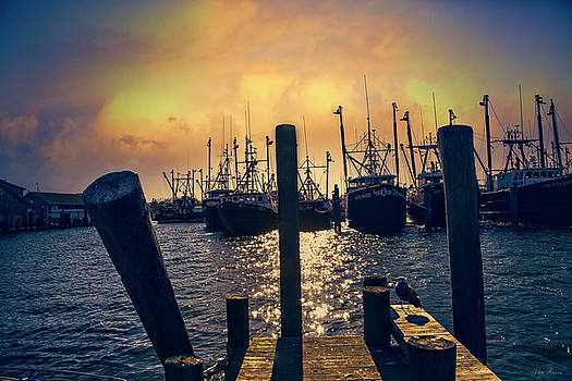 View from the Dock by John Rivera